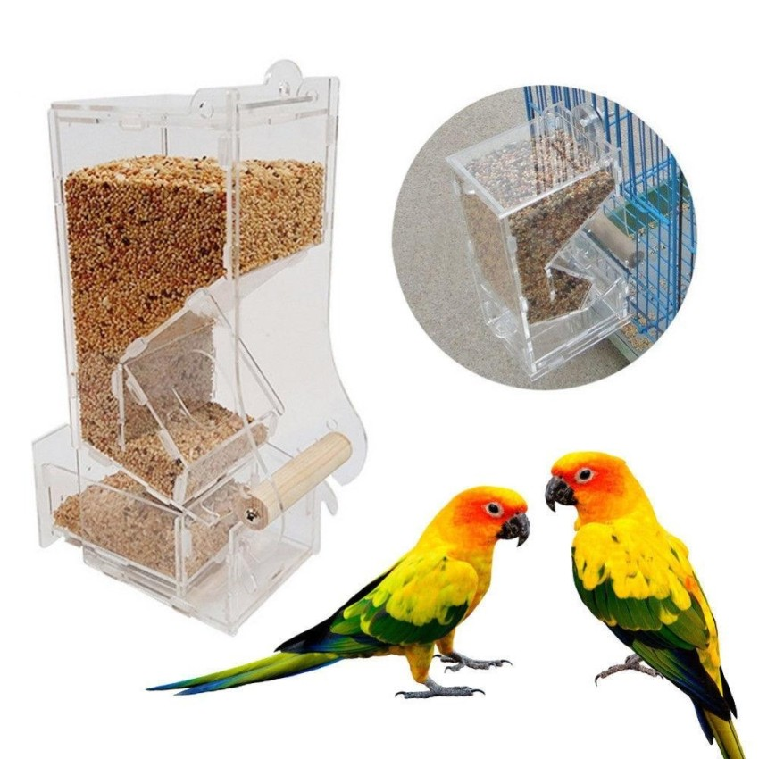 Lovebird Canary Aviary Clear