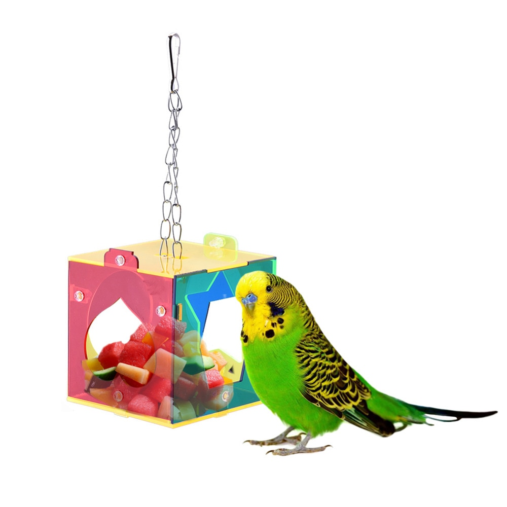 Parrot Feed Device Training Toys Cockatiel Peony Colorful 